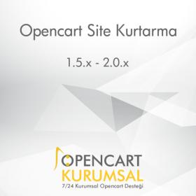 Opencart Site Kurtarma Hizmeti