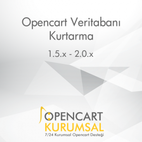 Opencart Veritabanı Kurtarma