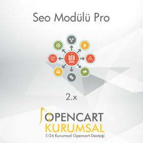 Opencart Ayrıntılı Seo Modülü Pro 2.x