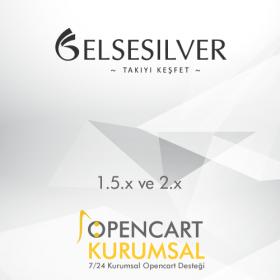 Elsesilver Xml Entegrasyonu